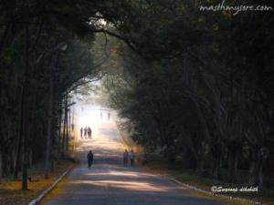 Road to Sjce, Mysore