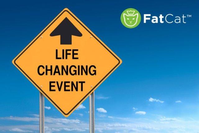 http://fatcatgaming.com